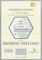 19-srebro-2015